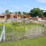 Jardin potager bio du village