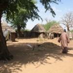 Dans les villages - Zone de Louga