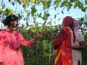 18_07 Dandipur (23) HelloAsso