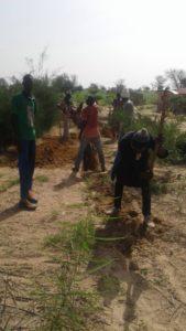 Octobre 2018 - La caravane de Bambey creuse les canalisations de l'adduction d'eau de la ferme de formation en agroécologie