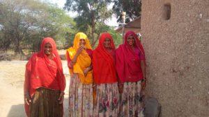 Paysannes du projet Biofermes au Rajasthan - BD
