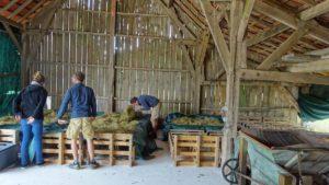 Hangar de séchage du conservatoire de la Ferme Sainte-Marthe Sologne