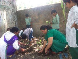 Primery school Chharba (2)
