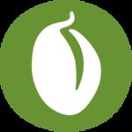 Graine SOL fond vert